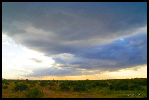 Ol Pejeta Conservancy, Kenya - Sunset