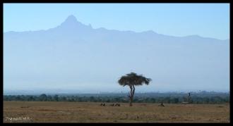 Ol Pejeta Conservancy, Kenya - Rhino Graves