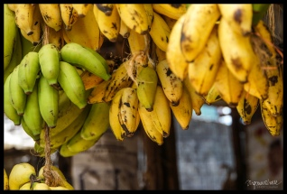 Market Day Nairobi - Bananas