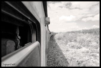 Long train to Mombasa