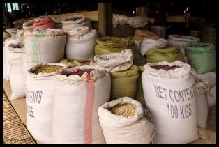 Kigali Market - Rwanda