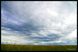 Big Sky - - Murchison Falls State Park