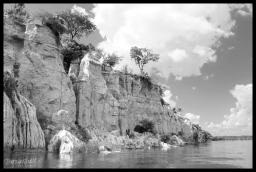 Bird Cliffs - Murchison Falls State Park