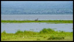 Nile Fishermen - Murchison Falls State Park