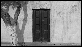Door with Tree, Santorini