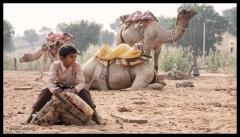 Osyian - A Boy with Camels