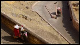 Jaipur - Elephant Ride