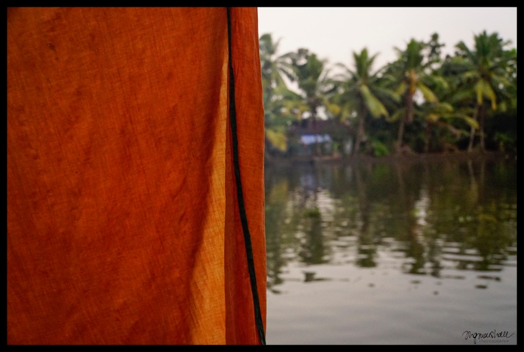 Backwaters - Alleppey