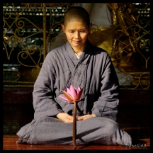 Nun - Shwedagon, Yangon