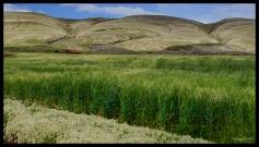 Crater - Maragua