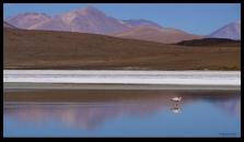 Flamenco, Las Montanas - Salt Flats