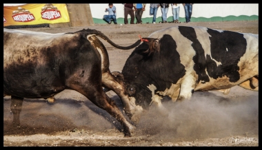 Arequipa - Juan Tronador VS Waykicha