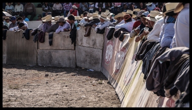 Arequipa - Cowboys