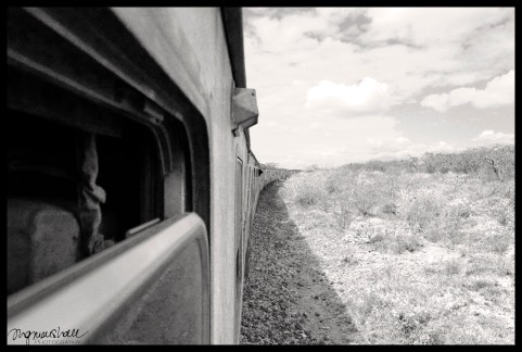 Long train to Mombasa - FB