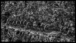Bikes - Amsterdam