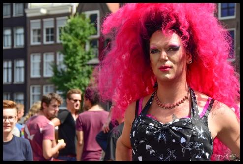 Pink - Amsterdam