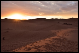 Dunes at Sunset - Hassilabied